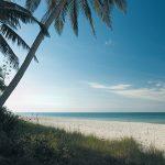 medical tourism in Southwest Florida