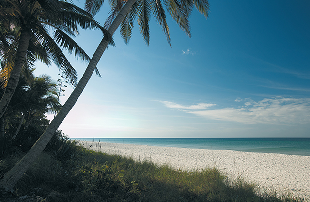 Beautiful Naples beaches enhance medical tourism in Southwest Florida